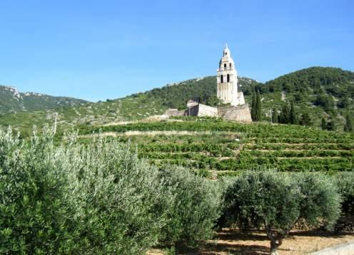 Vista komiza vineyards and church